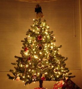 christmas pics 003a