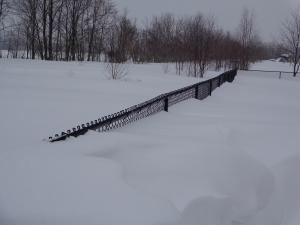 Soooo much snow